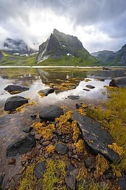Fjorsfjorden coast, fjord and mountains, Vinstadt, Lofoten, Nordland, Norway, Europe