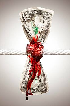 Wrinkled american dollar tied up and bleeding in rope