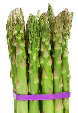Fresh organic asparagus isolated on a white background