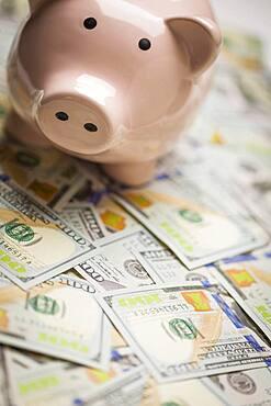 Piggy bank on stacks of newly designed one hundred dollar bills