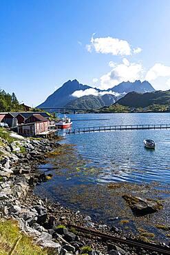 Little fish hamlets along a fjord, Lofoten, Norway, Europe