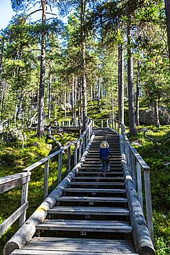 """Wooden stairs to the """"""""Bear's Den"""""""" Tafone Rock, Inari, Lapland, Finland, Europe"""