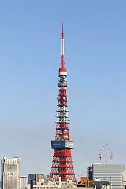 Cityscape with Tokyo Tower in front of blue sky, Tokyo, Japan, Asia