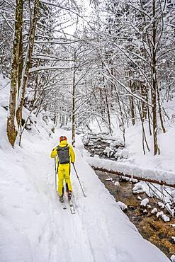 Ski tourers, young man on ski tour to Taubenstein, Mangfall mountains, Bavarian Prealps, Upper Bavaria, Bavaria, Germany, Europe