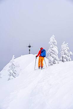 Young woman on ski tour, ski tourers, summit of Rauhkopf in winter, Mangfall mountains, Bavarian Prealps, Upper Bavaria, Bavaria, Germany, Europe