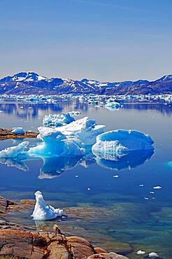 Icebergs reflected in the fjord, Tiniteqilaaq, Tasilaq, Greenland, Denmark, North America