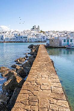 Port of Naoussa, Paros Island, Cyclades, Greece, Europe