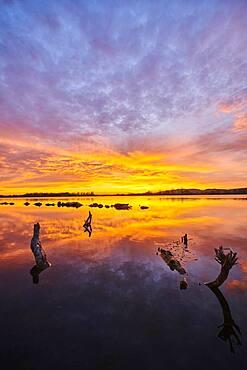Sunset above danubia river, Upper Palatinate, Bavaria, Germany, Europe