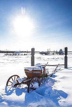 Old horse cart, Cherkekhskiy regional museum, Road of Bones, Sakha Republic, Yakutia, Russia, Europe