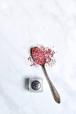 Rose salt in spoon and salt shaker, rose petal salt, Germany, Europe