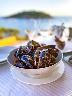 Mytilus (Mytilus) with tomato sauce and garlic in the evening sun by the sea, Majorca, Spain, Europe
