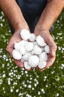 Golfball-sized hailstones in hands, Mondsee, Upper Austria, Austria, Europe