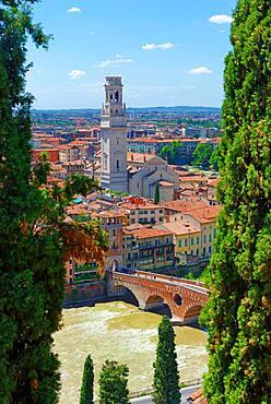 City view Verona with the stone bridge Ponte Pietra and the river Adige, Castel San Pietro, Verona, Veneto, Italy, Europe