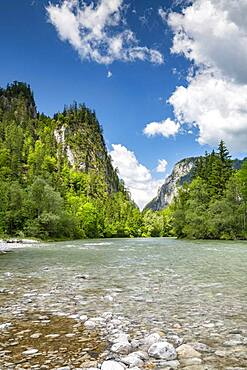 River Enns, Gesaeuse National Park, Styria, Austria, Europe