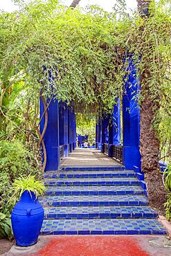 Marrakech, Morocco, January 15, 2020:Colorful architecture in beautiful Majorelle Garden established by Yves Saint Laurent, Africa