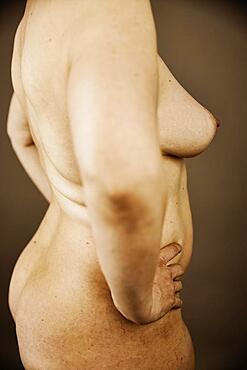 Female nude, side view of an older, thicker woman with wrinkles, studio shot, Germany, Europe