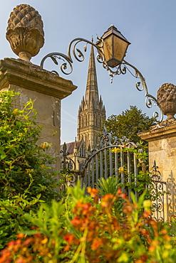View of Salisbury Cathedral from North Walk, Salisbury, Wiltshire, England, United Kingdom, Europe