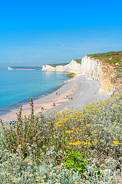 View of Seven Sisters Chalk Cliffs from Birling Gap, South Downs National Park, near Eastbourne, East Sussex, England, United Kingdom, Europe