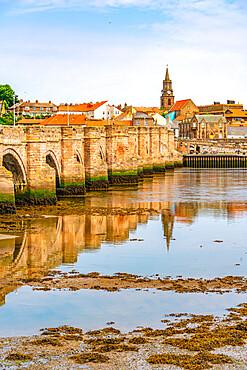 View of River Tweed and town buildings, Berwick-upon-Tweed, Northumberland, England, United Kingdom, Europe