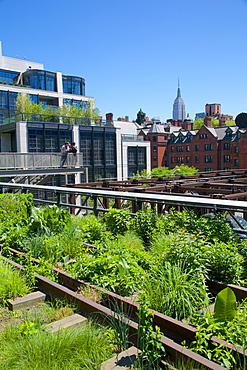 Empire State Building from the High Line, New York, United States of America, North America