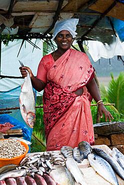 Roadside fish seller, Kerala, India, Asia