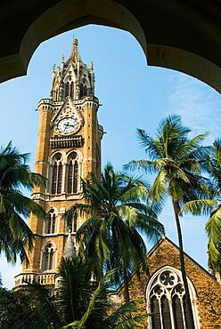 Rajabhai Clock Tower, Mumbai (Bombay), Maharashtra, India, Asia