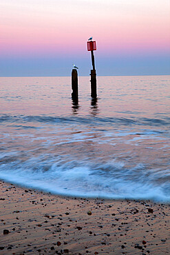 Seascape with wooden posts, Southwold, Suffolk, England, United Kingdom, Europe