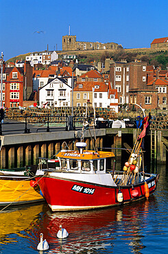 View over fishing harbour to St. Mary's Church, Whitby, Yorkshire, England, United Kingdom, Europe