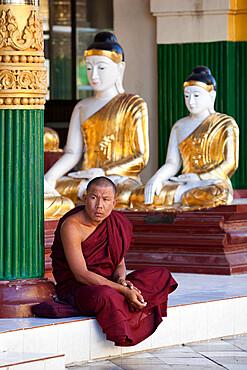 Buddhist monk sitting under Buddha statues, Shwedagon pagoda, Yangon (Rangoon), Yangon Region, Myanmar (Burma), Asia
