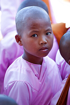 Young female monk, Phaung Daw Oo pagoda, Inle Lake, Shan State, Myanmar (Burma), Asia