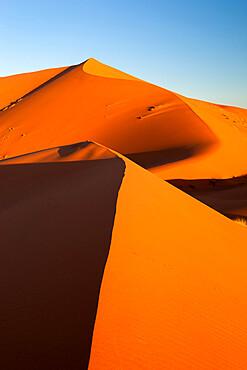 Sand dunes of Erg Chebbi, Merzouga, Meknes-Tafilalet, Morocco, North Africa, Africa