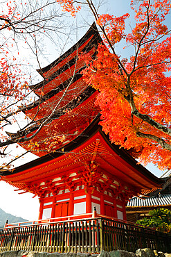 Five-Storey Pagoda (Gojunoto) in autumn, UNESCO World Heritage Site, Miyajima Island, Western Honshu, Japan, Asia