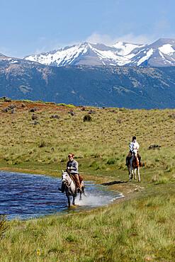 Gaucho on horse galloping by lake at Estancia Alta Vista, El Calafate, Parque Nacional Los Glaciares, UNESCO World Heritage Site, Patagonia, Argentina, South America