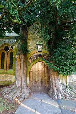Yew trees and door of St. Edward's Church, Stow-on-the-Wold, Cotswolds, Gloucestershire, England, United Kingdom, Europe