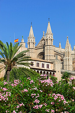 Palma Cathedral (La Seu), Palma de Mallorca, Mallorca (Majorca), Balearic Islands, Spain, Mediterranean, Europe