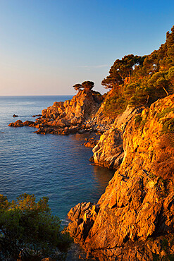 Coastline at dawn, Calella de Palafrugell, Costa Brava, Catalonia, Spain, Mediterranean, Europe