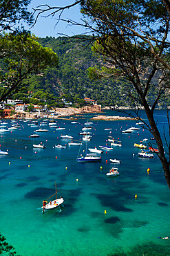 View over bay, Aiguablava, near Begur, Costa Brava, Catalonia, Spain, Mediterranean, Europe