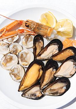 Traditional dish of di pesce crudo (raw seafood), Puglia, Italy, Europe