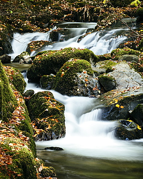 Stock Ghyll Force Waterfalls, Ambleside, Lake District National Park, UNESCO World Heritage Site, Cumbria, England, United Kingdom, Europe