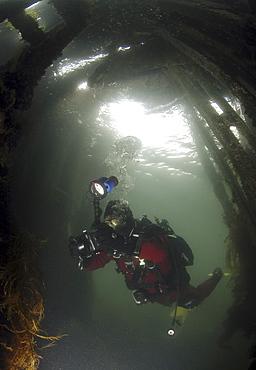 Diver inside British Blockship FC Pontoon, Scapa Flow, Orkney islands, Scotland, UK