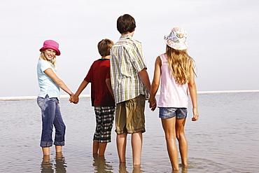 Children looking at ocean view