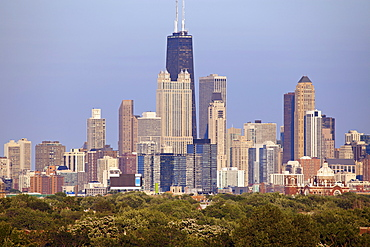Skyscrapers in downtown, USA, Illinois, Chicago