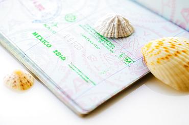 Studio shot of passport with seashells