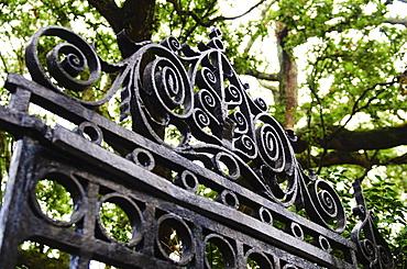 USA, South Carolina, Charleston, Close up of ornate iron gate