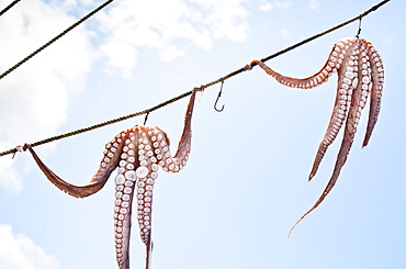 Greece, Cyclades Islands, Mykonos, Sun drying octopus on fishing boat
