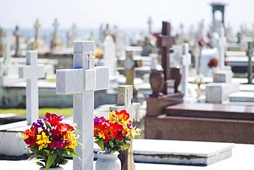 Puerto Rico, Old San Juan, Garves at Santa Maria Magdalena Cemetery