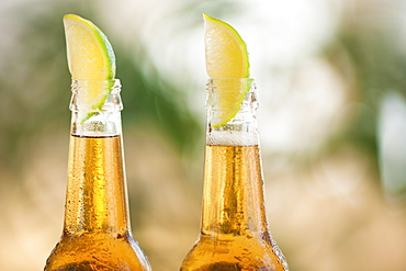 Two beer bottles with lime wedges