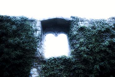 United Kingdom, Bristol, Window in old ruin