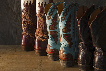 Variation of cowboy shoes
