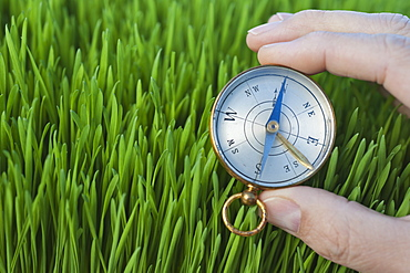 Male hand holding compass over grass